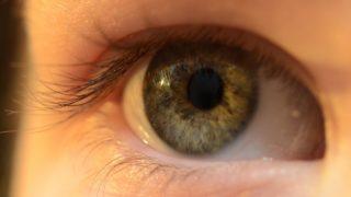 Kontaktlinse zoom