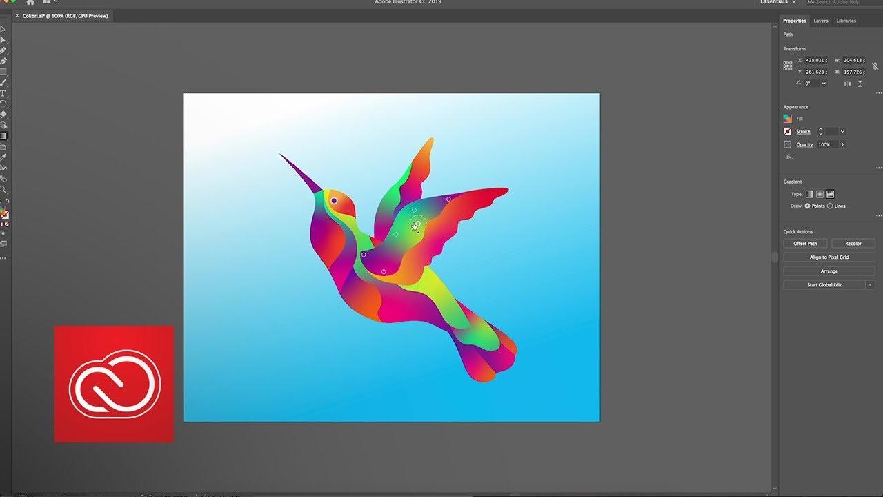 Illustrator iPad