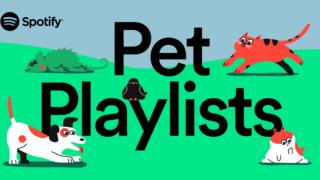 spotify-pet-playlists