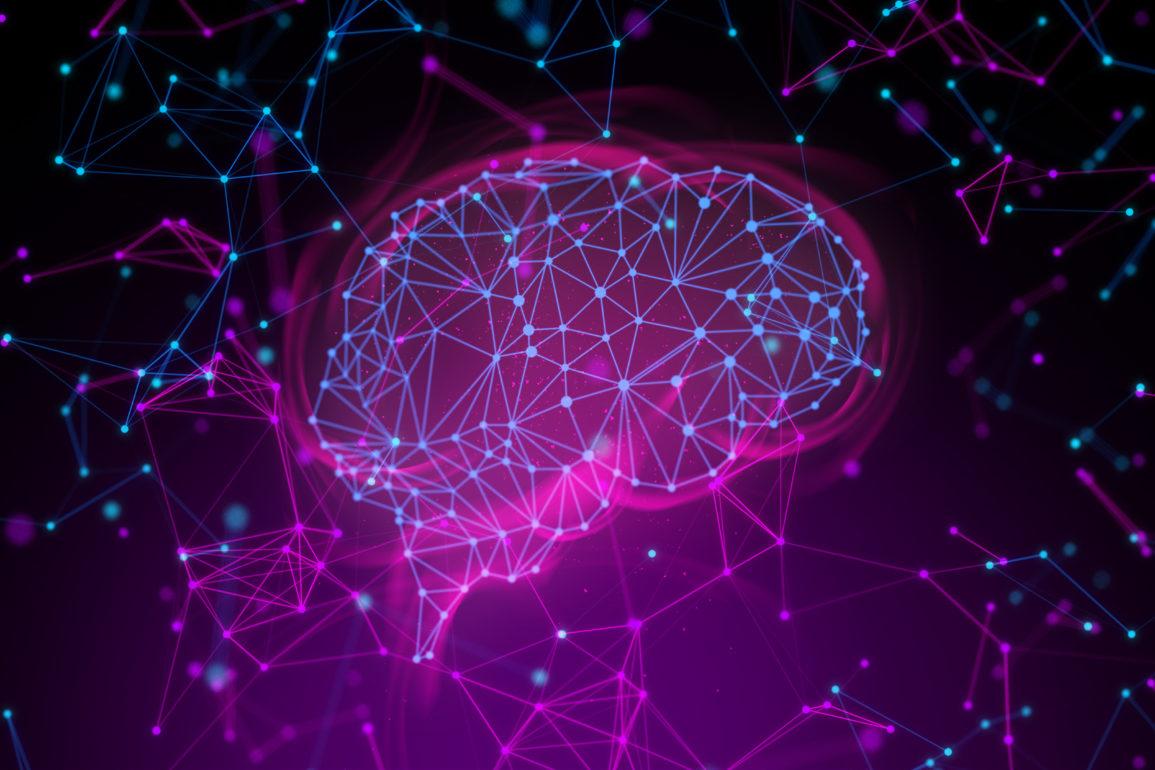 Google og Harvard tar studiet av menneskehjernen ett steg videre.
