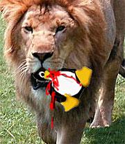 Linux lion virus