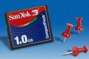 Sandisk 1GB