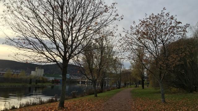 iPhone 6s Fjordparken.