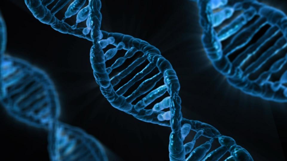 DNA kan i fremtiden huse all dine data i århundrer.