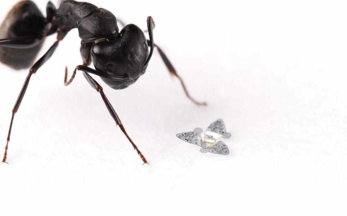 Flyvende microchip.