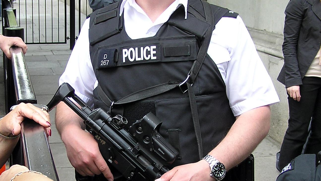 Politiet i de enkelte land kan ikke gjøre så mye med nettkriminalitet over landegrensene. Derfor trenger vi et «Internetpol», mener F-Secure.